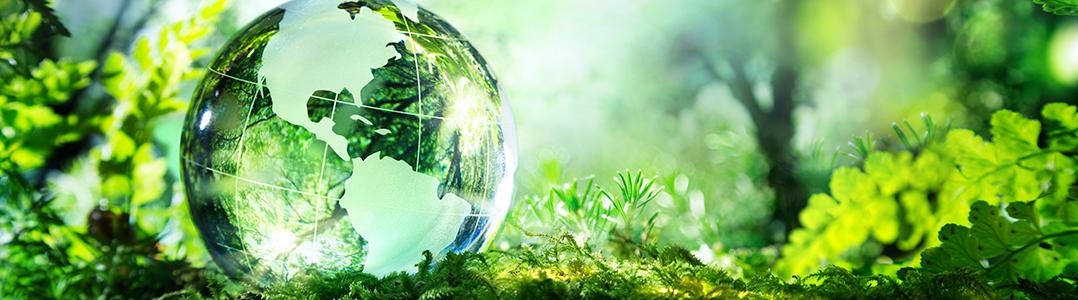 sustainability-header